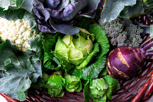 various cruciferous vegetables